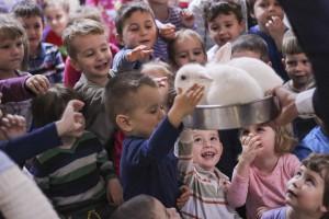 magician cluj copii cristian guna